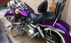 LOOK: This Vikings-themed Harley Davidson is incredible